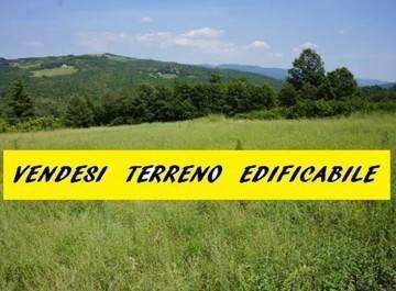 Foto 6 - Terreno Edificabile industriale in Vendita - Varedo (Monza e Brianza)