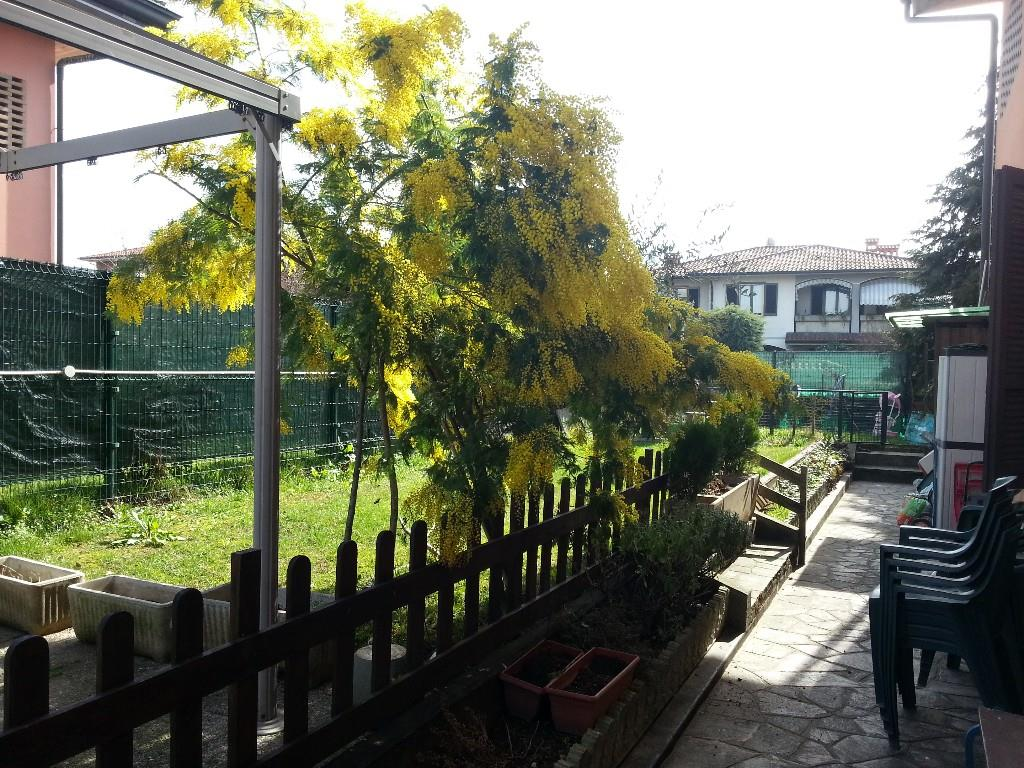 Foto 1 - Appartamento in Vendita - Trezzano Rosa (Milano)