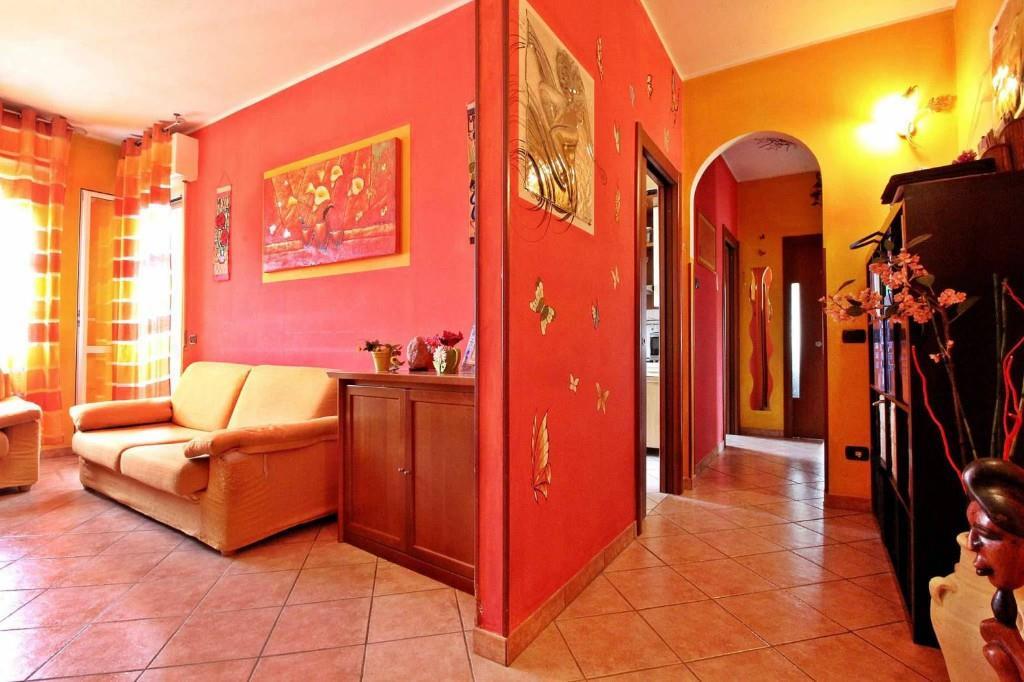 Foto 4 - Appartamento in Vendita - Carugate (Milano)