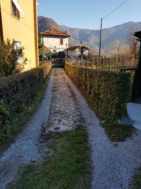 Foto 4 - Villa in Vendita - Asso (Como)